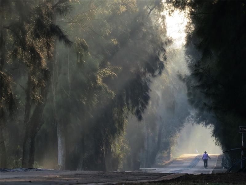 作品名稱: 戰地秘境 攝影 洪清漳