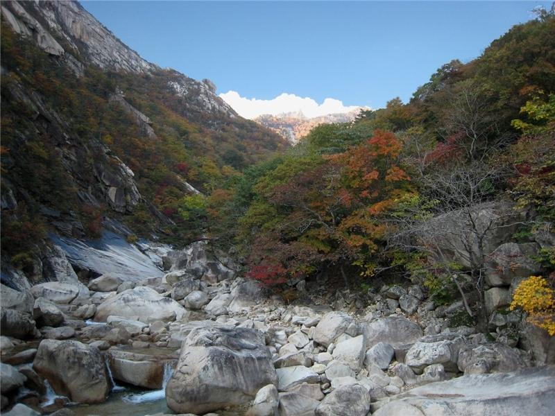 作品名稱: 深山裡的唯美 攝影 王賢德